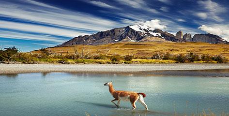 Alle Südamerika Kreuzfahrten bei Dreamlines im Überblick
